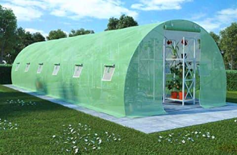 Comprar invernadero para el cultivo de plantas, tomates y verduras